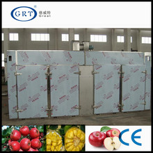 Double door electric drying oven / fruit drying machine/fruit dryer for sale