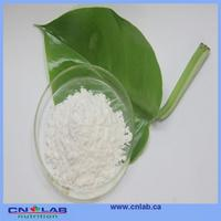 GMP factory is stevia artificial sweetener