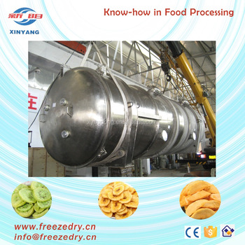 Multi function vacuum freeze drying equipment-food freeze dryer for sale ( LG125)