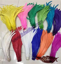 Wholesale Dyed Coque Tails Feather Long Feathers Rooster Feathers For Sale