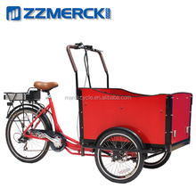 Transporting Kids Electric Cargo Tricycle