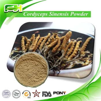 Best Price Manufacture Natural Cordyceps Sinensis Extract