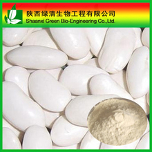 Global Export High Quality pure 100%natural white kidney bean extract/ red kidney bean P.E. powder/light speckled kidney bean