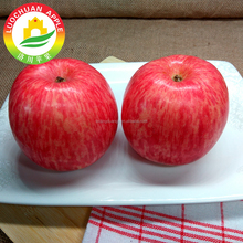 Luochuan Exporter Best Price China Fruit Red Fresh Fuji Apple