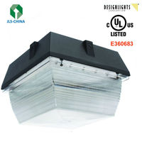 High Lux Outdoor Canopy 5years warranty with UL cUL DLC RoHS FCC