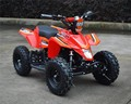 new model 500w36V 800W36V electric mini atv