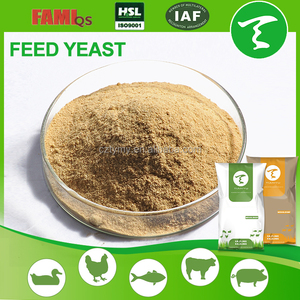 Yeast Powder 50% for Livestock
