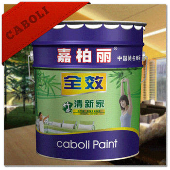 Caboli inside covering design living room wall paint colors