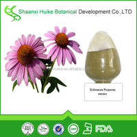 100% Natural Echinacea Angustifolia Extract Powder,P.E,Plant Extract Powder