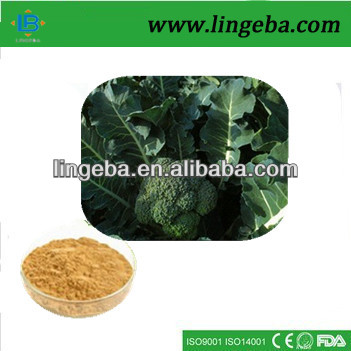 Fast shipping broccoli glucoraphanin plant extraction
