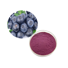 Organic Dried Blueberry Extract/ Blueberry Fruit Powder Sugar Free Blueberry powder