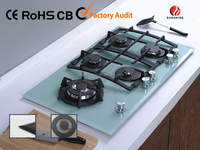 Tempered Glass gas cooktop