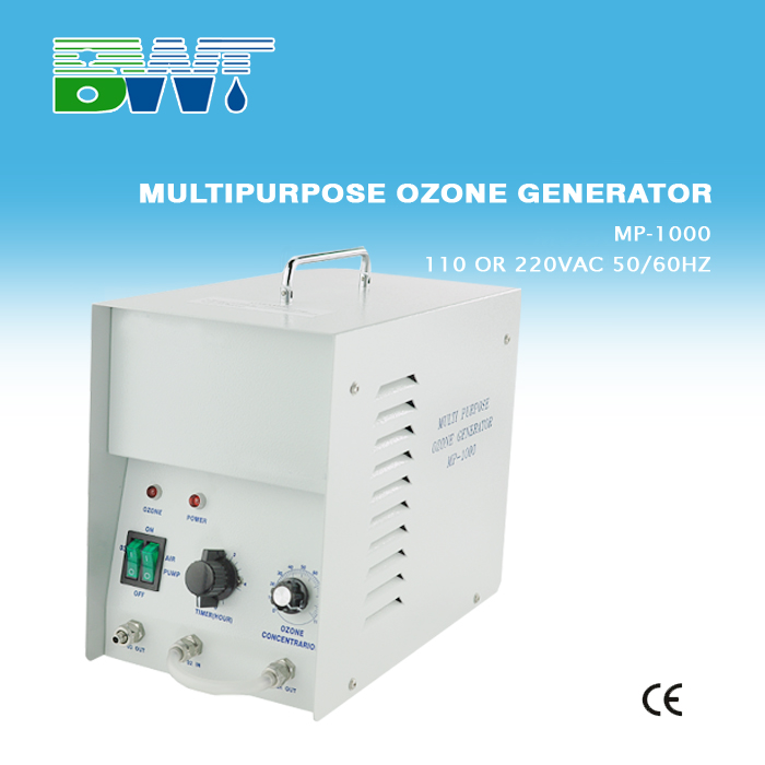1G small home ozone generator for food and fruit treatment
