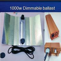 China manufacture DE Grow Light 600w digital Electronic Ballast