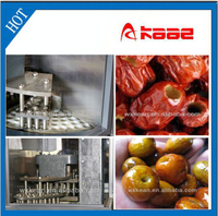 Hot sale Industrial Dates seeds removing machine manufactured in Wuxi Kaae
