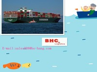 mobile phone shipping from shenzhen to Jebel ali----skyp:bhc-shipping008