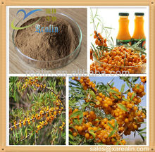 natural pure Hippophae rhamnoides oil/ Seabuckthorn oil