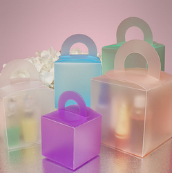 Circle Handle Colored Frosted Plastic Boxes