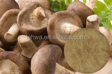 High quality anti cancer Active Hexose Correlated Compound Shiitake Mushroom Extract