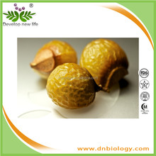 Natural Soapnut Extract Sapindoside 40%/Soap Nuts Organic Laundry Detergent, Soapnuts, Soap Berry