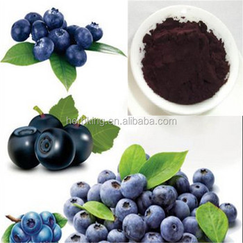 wholesale natural organic Blueberry Powder,best price Bilberry Extract powder