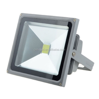 Ienergy premium quality CE&RoHS approved IP65 80W LED Floodlight Aluminum Alloy for outdoor using of China origin