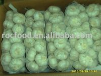 2011 new crop Chinese Fresh Normal white garlic