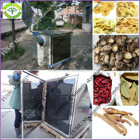 energy saving stainless steel fruit and vegetable drying machine