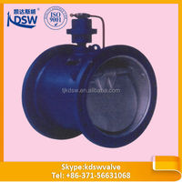 Casting steel evacuated air check valve