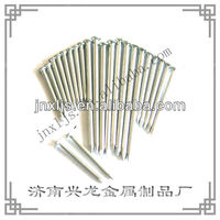 Stainless Steel Galvanized Concrete Nails