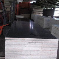 laminated wood board /black film faced plywood constructioon material