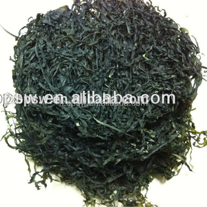 2018 Dried seaweed Sea Kelp Cut laminaria japonica