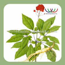 Panax Ginseng root extract for hair , Ginsenosides for hair , ginseng extract for hair