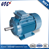 General Purpose Cast Iron AC Motors - 1 HP to 300 HP