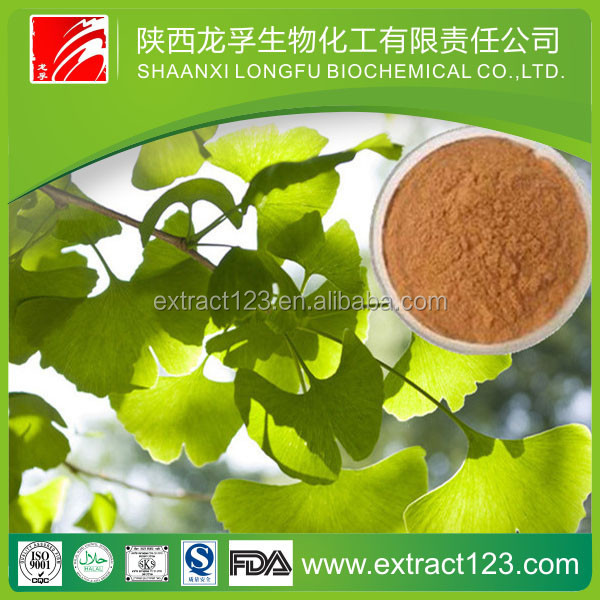 Chinese Manufacturer Ginkgo Biloba L Extract