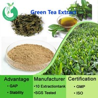 Tea Extract/Tea Polyphenols/Green Tea leaf Extract Powder