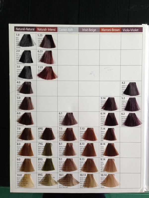 Oem Hair Dye Color Chart Salon Hair Color Chart Buy Hair