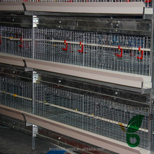 broiler poultry control shed equipment for one day old broiler chicks