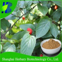 Natural raspberry extract 10:1 Flavonoids