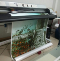Guangdong novajet 750 inkjet printing machine with pigment ink