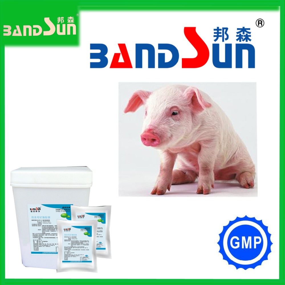 florfenicol veterinary products for animal poultry medicine veterinary vaccines veterinary medicine pigeon medicines