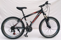 Alloy mountain bike GAMMA-24V