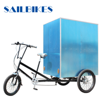 professional designed flatbed 3 wheel tricycle for cargo