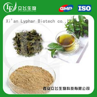 L-theanine Powder Green Tea Extract,Camellia Sinensis Extract