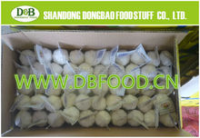 High Quality Natural Garlic,Natural Garlic With Good Quality In China