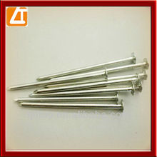 common hammer nails,wire nails,electric galvanized