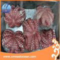 2017 High quality seafood wholesale japanese frozen octopus for sale