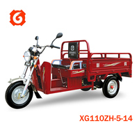Xinge high quality cheap price 110cc trike/ tricycle scooter cargo motorcycle