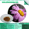 High Quality 4% Polyphenols Echinacea Purpurea Extract