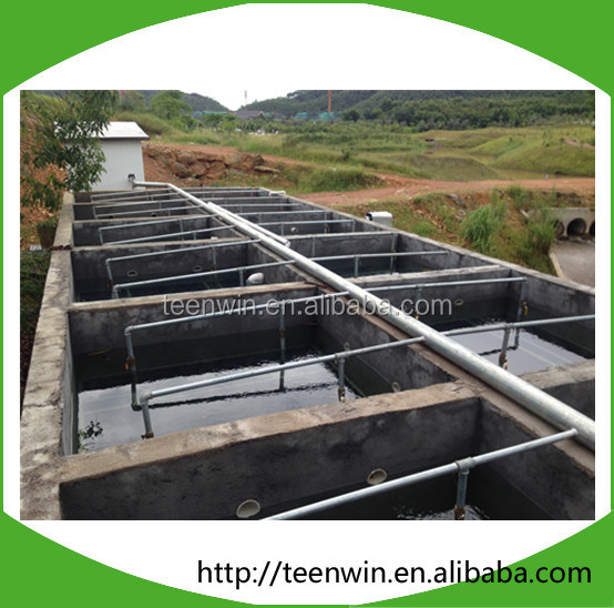 Domestic Sewage Purifying Water Treatment Plant Equipment